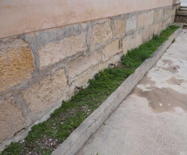 Fuente de los seis caños, Escorihuela